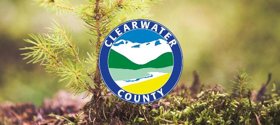 2021 Conifer Tree Seedling Program